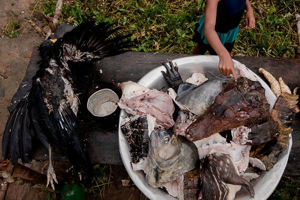 Abundância da caça, mas com moderação, pediu o cacique Juventino.Foto: Ana Mendes