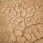 Mudança climática prejudica agricultores