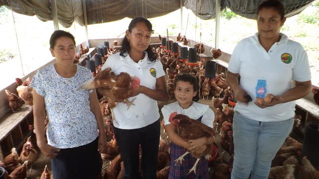 Integrantes de uma pequena cooperativa avícola em El Salvador, que gera renda para o grupo de mulheres que promoveu a iniciativa e para suas famílias. A América Latina é o maior exportador mundial de carne de ave. Foto: Edgardo Ayala/IPS