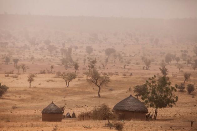 Região semidesértica do Sahel em Níger. Os nutrientes obtidos do pescado capturado durante a estação chuvosa podem marcar uma diferença na vida das pessoas mais vulneráveis, em particular se não podem secá-lo e armazená-lo corretamente para consumi-lo ao longo do ano. Foto: FAO