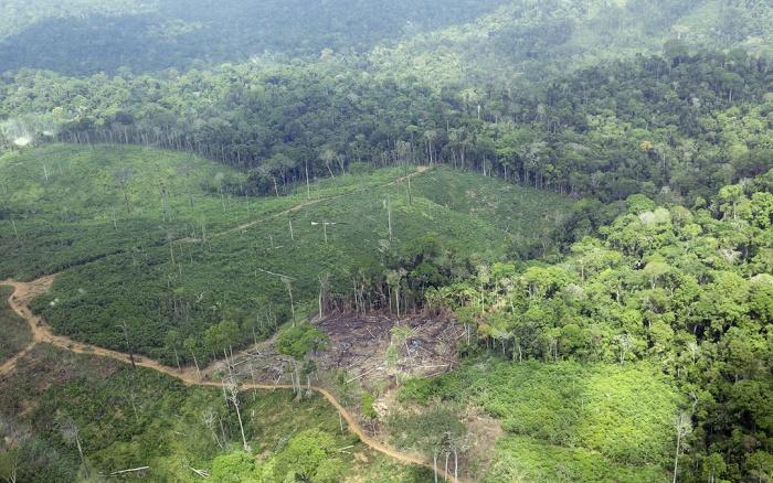 Área recentemente desmatada na Terra Indígena Cachoeira Seca do Iriri (PA), campeã do desmatamento entre 2012 e 2015. Foto: © Juan Doblas - ISA