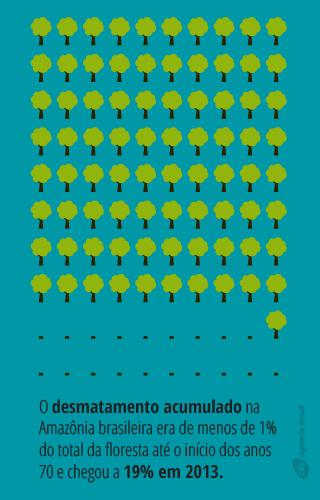 desmatamento3