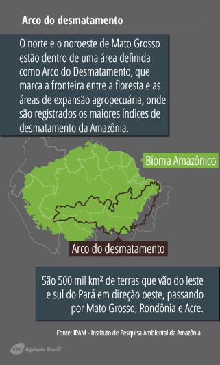 desmatamento6