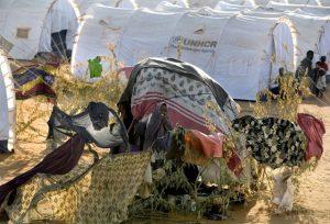 Abrigos provisórios e novas barracas de campanha na seção de recém-chegados no acampamento de Ifo, no Quênia. Foto: E. Hockstein/Acnur