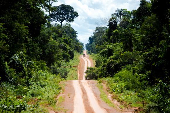 Estrada que leva ao distrito de Guariba e marca o limite da Terra Indígena Kawahiva do Rio Pardo. Foto: Marcelo Camargo/Agência Brasil