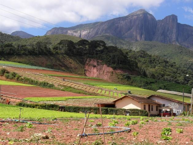 Fazenda familiar no Estado do Rio de Janeiro com um sistema de plantio que se adapta às manifestações da mudança climática na região. Foto: Fabiola Ortiz/IPS