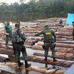 Ibama apreende 432 toras na fronteira com o Peru