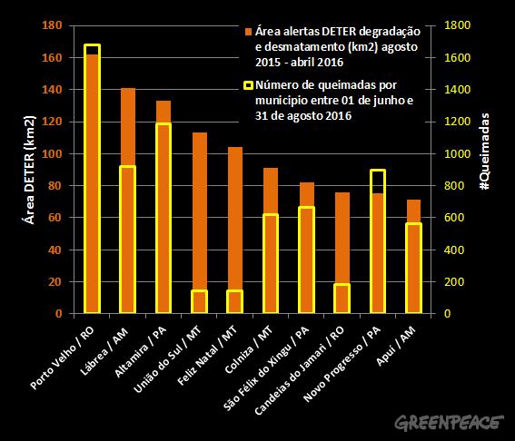 Dos dez municípios com mais desmatamento, sete registraram mais queimadas. Foto: greenpeace