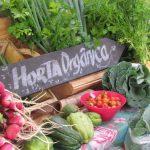 Projetos de hortas comunitárias e de compostagem em UBS