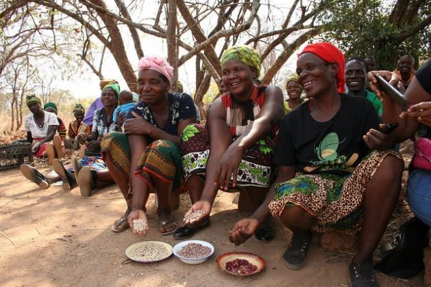 Agricultoras mostram orgulhosas parte de sua colheita em uma aldeia vizinha à capital de Zâmbia. As leguminosas são boas para a nutrição e como fonte de renda, em particular para as mulheres responsáveis pela segurança alimentar das famílias. Foto: Busani Bafana/IPS