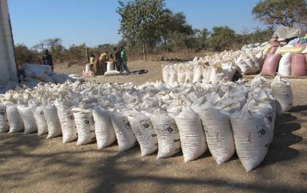 Sacas de milho no Depósito da Agência de Reserva de Alimentos em Kasiya, no distrito de Pemba, no sul de Zâmbia. Foto: Friday Phiri/IPS