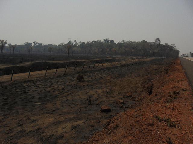 Uma pastagem incendiada na margem do trecho da rodovia BR-364 que leva ao norte da Bolívia e leste do Peru, a partir de Rondônia. As grandes queimadas diminuíram na Amazônia, mas persistem os incêndios em pequenas áreas. Foto: Mario Osava/IPS