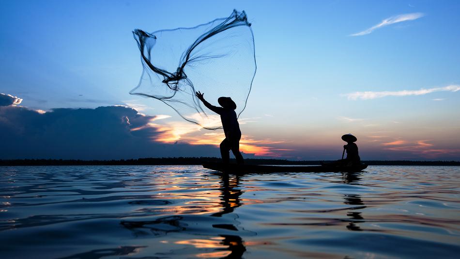 Walmart é o único varejista no país a ter cerca de 80% do volume de pescados comercializados já rastreados.