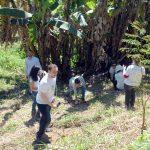 Corredor Ecológico apresenta plantios em São José