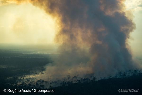 Nuvem de fumaça proveniente de queimada cobre fazendas e floresta em Lábrea, no sul do Amazonas. Foto: © Rogério Assis / Greenpeace