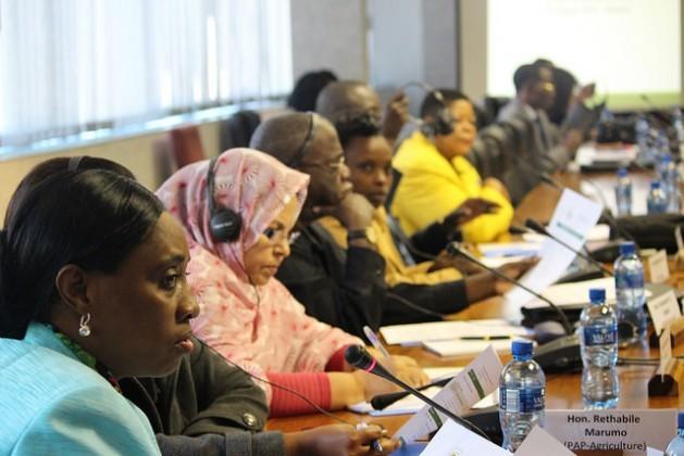 Representantes do Parlamento Pan-Africano participam do painel especial que essa instituição organizou junto com a FAO para impulsionar a segurança alimentar e nutricional. Foto: Desmond Latham/IPS