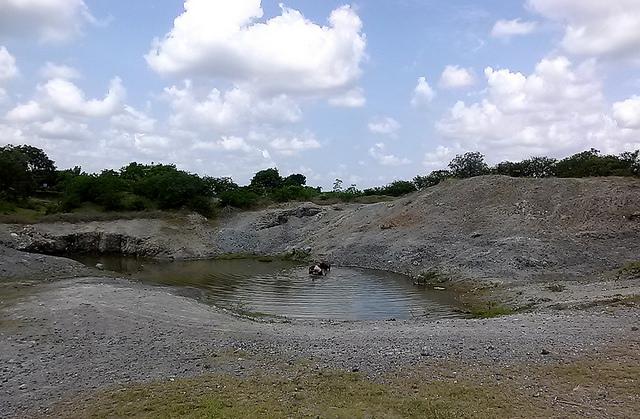 Um reservatório quase vazio, perto da fazenda La Yuraguana, que recolhe água de chuva, que é usada pelos camponeses dos subúrbios rurais da cidade de Holguín para dar de beber ao gado. Foto: Ivet González/IPS
