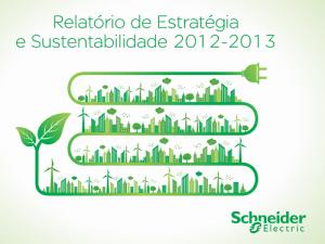 Relatório Schneider 2013