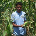 Camboja recupera canais de irrigação
