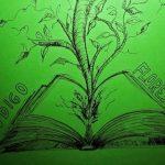A grilagem de terras e o Novo Código Florestal em 3 minutos